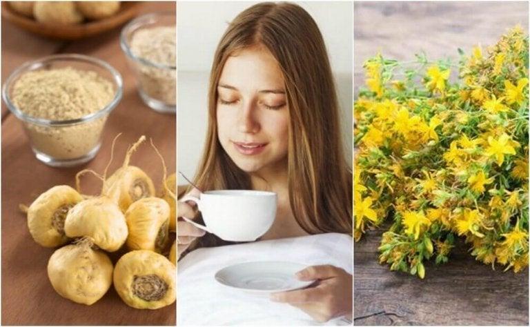 Je libido verhogen met vijf geneeskrachtige planten