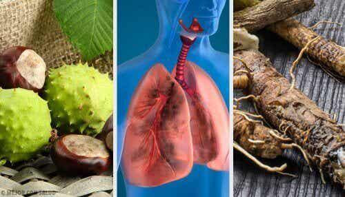 Versterk je longen en adem beter met deze zelfgemaakte remedies!