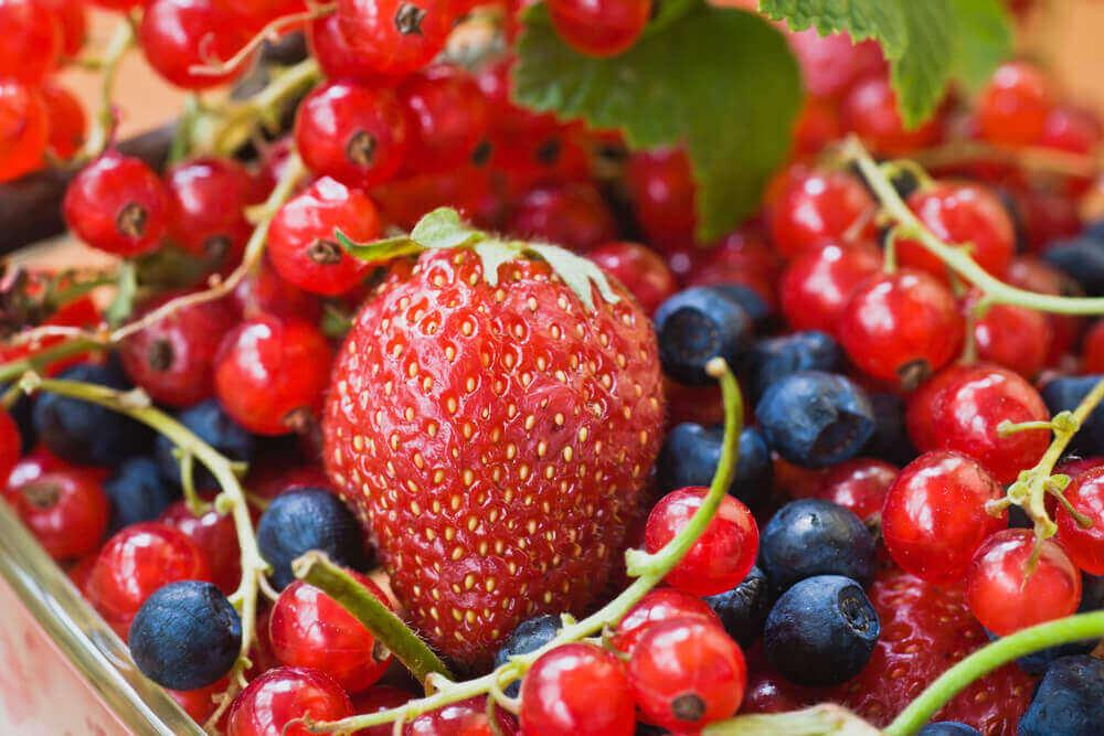 Behandelingen voor spataderen rode voedingsmiddelen