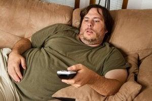Zes soorten obesitas, type als gevolg van slechte regulatie