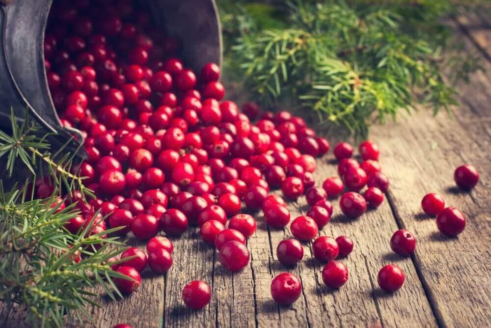 Huismiddeltjes voor flebitis, cranberries