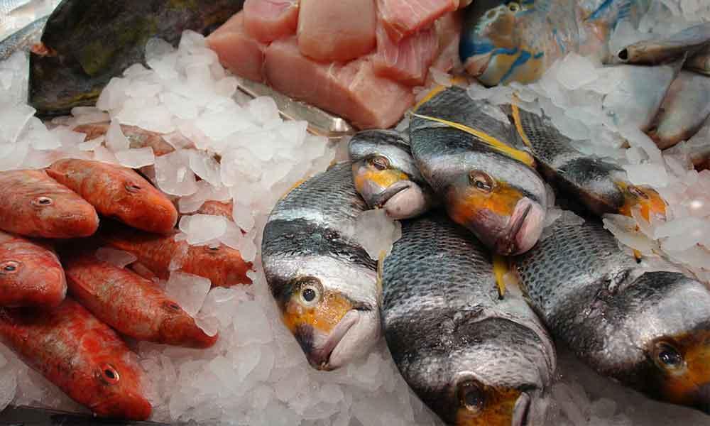 Kwik en vis