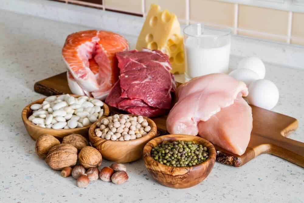 Verschillende soorten eiwitten