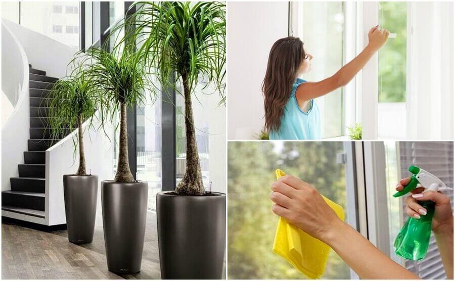 6 dingen die je kunt doen om de luchtkwaliteit in je huis te verbeteren