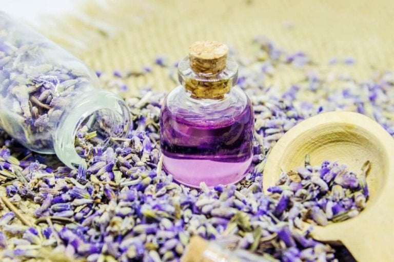 Lavendelolie maken en gebruiken op deze manieren