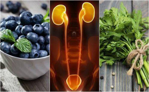 De nieren en de blaas beschermen met 7 voedingsmiddelen