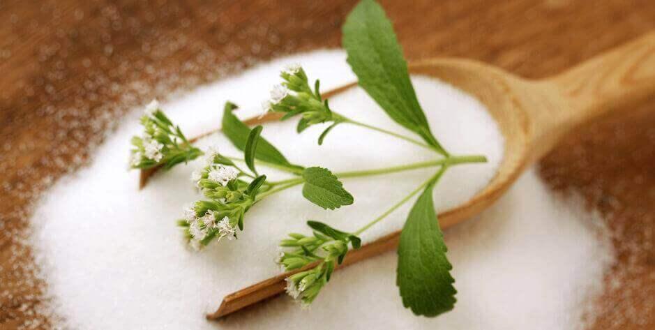 Stevia, een natuurlijke behandeling van diabetes