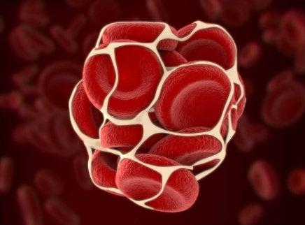 Relatie tussen vitamine K-tekort en het bloed