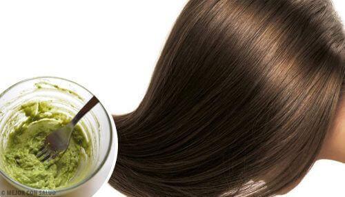 4 gezonde en natuurlijke tips voor haarverzorging