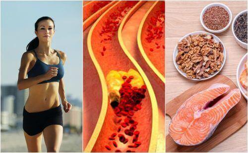 Hou je cholesterol onder controle: 6 natuurlijke tips