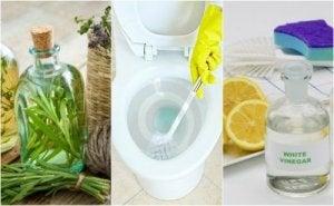 Milieuvriendelijke schoonmaakmiddelen om de badkamer schoon te maken