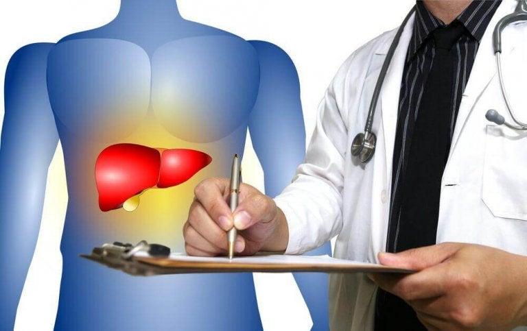 Een behandeling van leververvetting met natuurlijke remedies