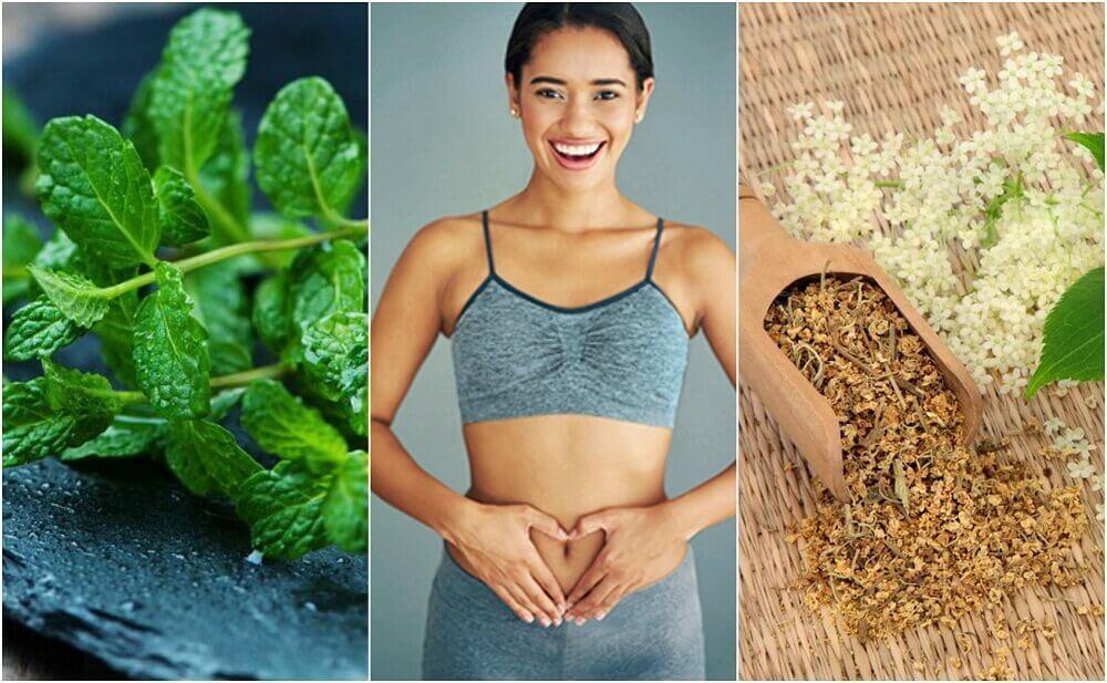 Zorg voor je spijsvertering met 6 geneeskrachtige planten