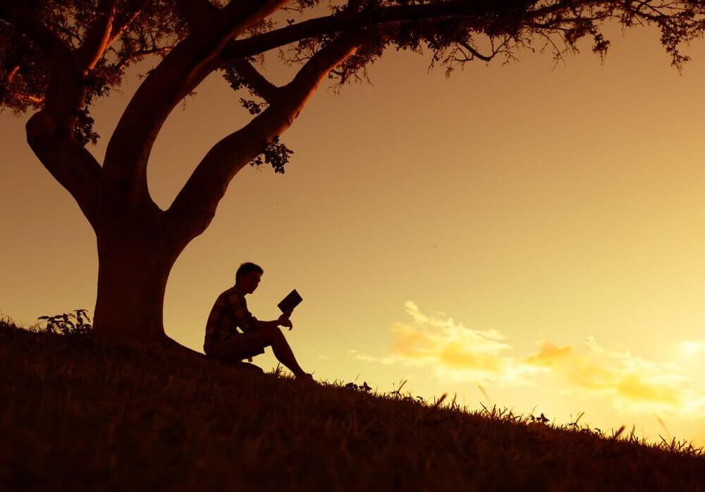 Man onder een boom in de schemering