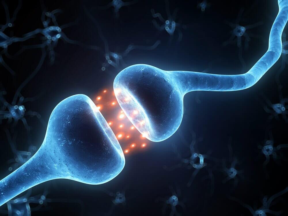 Zenuwcel en electriciteit