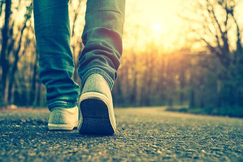 Voordelen van dagelijkse wandelingen