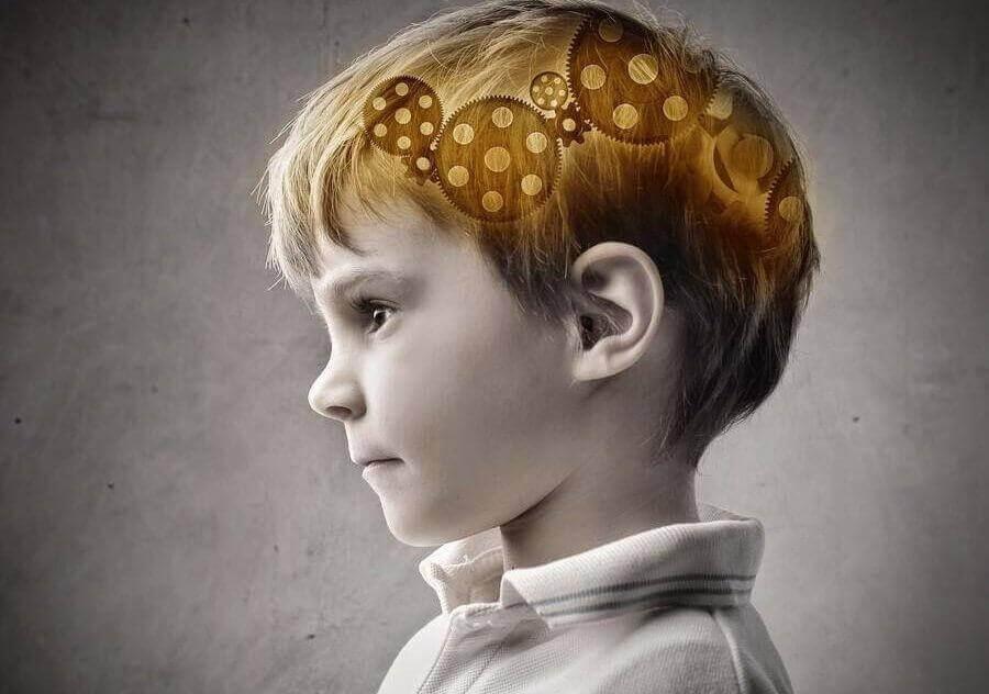 Welk deel van de intelligentie is overgeërfd van de moeder?