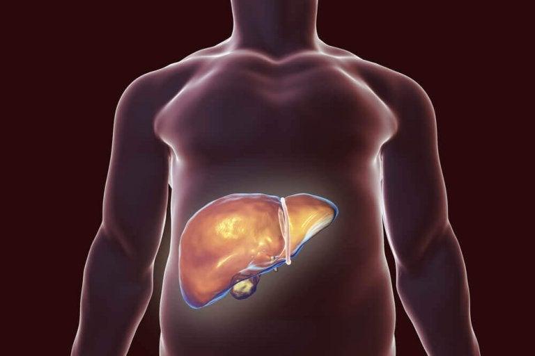 De beste natuurlijke remedies voor de ontgifting van de lever