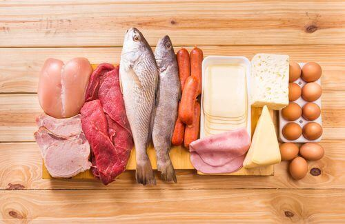 Voedsel dat veel eiwit bevat