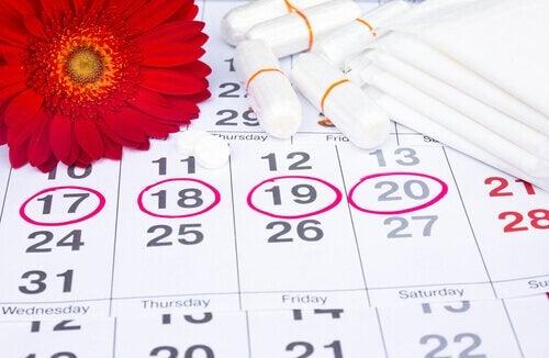 Menstruatie kalender
