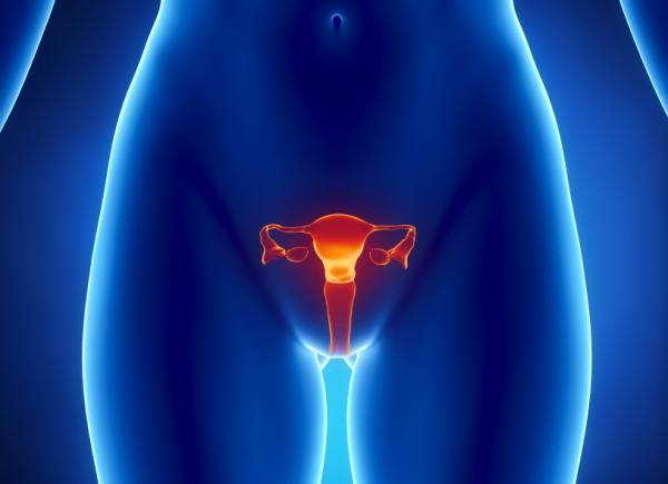 Menstruatie