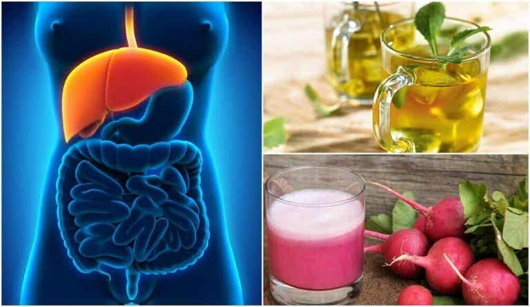 Ontdek een aantal natuurlijke behandelingen voor leververvetting