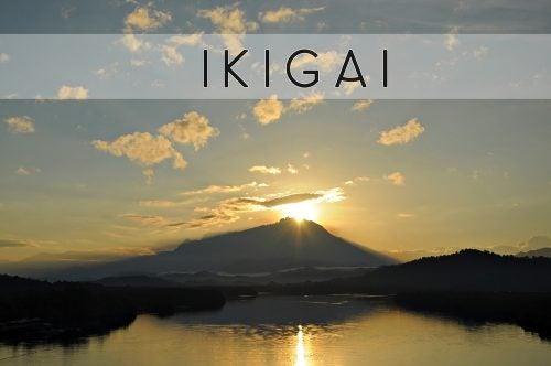 Ikigai: de reden van bestaan, het Japanse geheim van beter leven