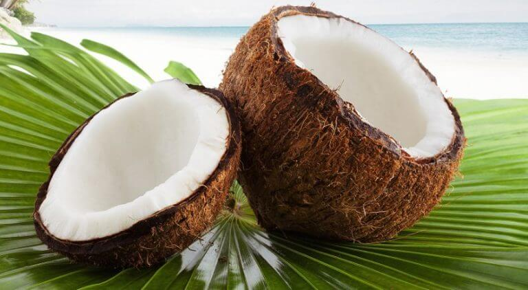 Kokosnoot op palmbladeren