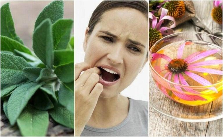 Bestrijd een tandvleesontsteking met deze 5 natuurlijke remedies