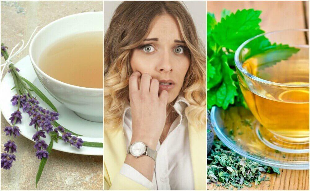Je zenuwachtigheid bedaren met 5 remedies op basis van kruiden