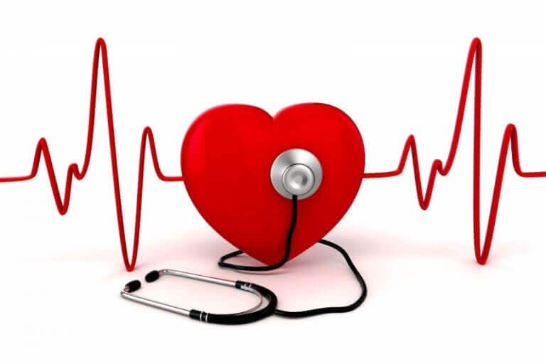De deugden van visolie voor het hart