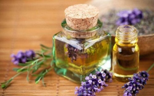 Etherische olie van lavendel is ideaal tegen vlooien