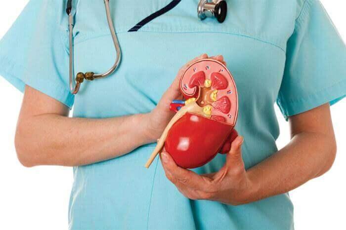 Goed voor je nieren zorgen