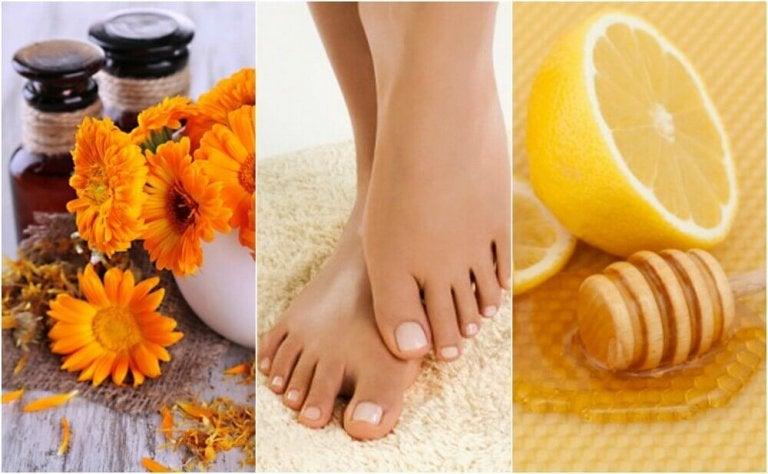 Vijf natuurlijke remedies tegen ingegroeide nagels