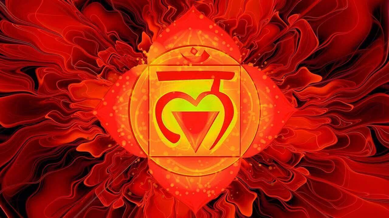 Muladhara, Sanskriet voor wortel, is het eerste chakra