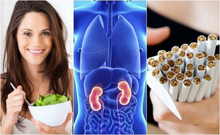 Je nieren beschermen met 6 fundamentele verzorgingstips