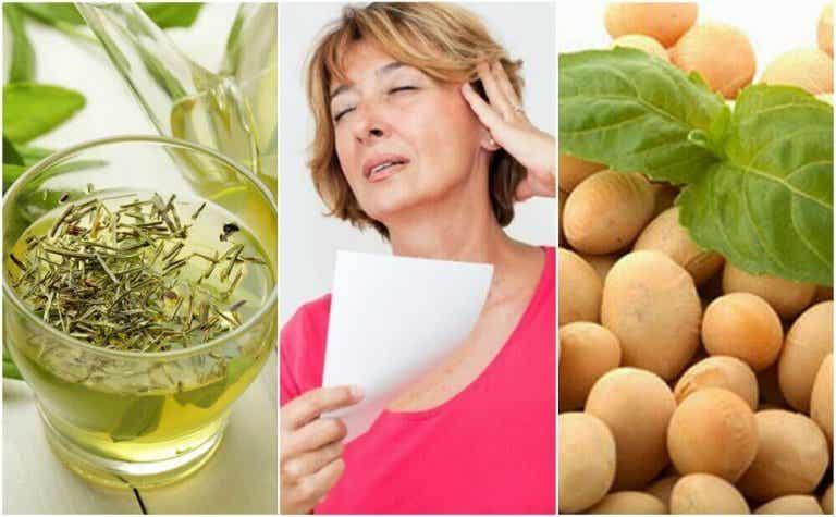 5 natuurlijke producten om de menopauze onder controle te houden