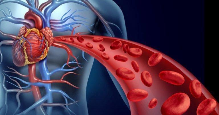 Hoe de bloedcirculatie op gang te brengen