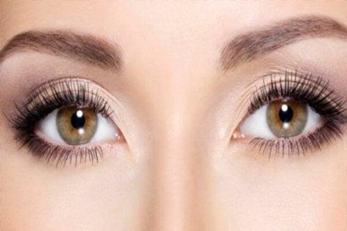 Bruin groene ogen met lange wimpers