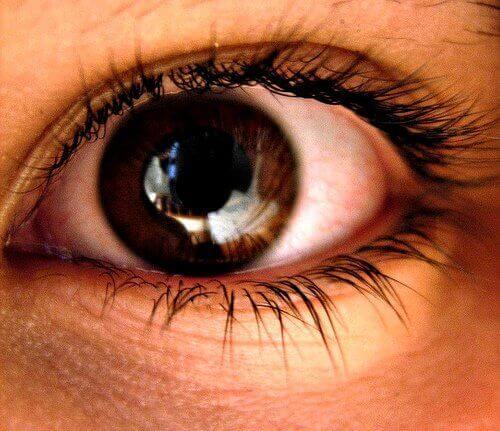 Bruin oog met zichtbare pupil