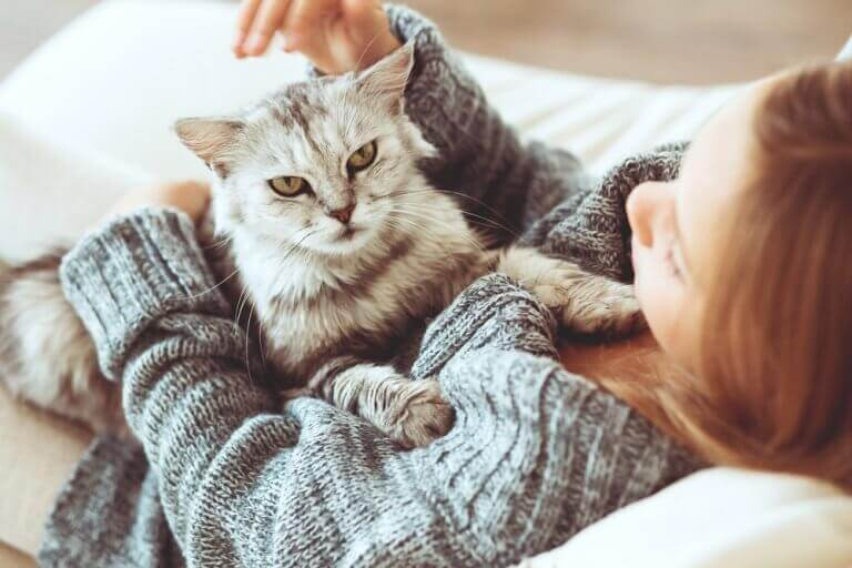 Meisje kroelt met kat