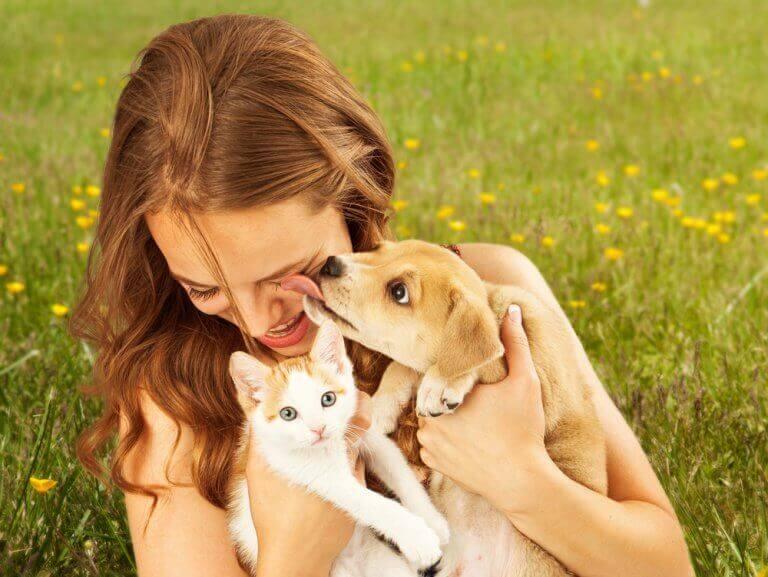 Vrouw met kitten en pup in het gras
