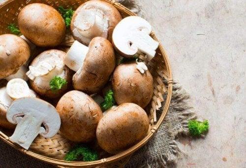 Verse champignons zijn lekker om op te vullen