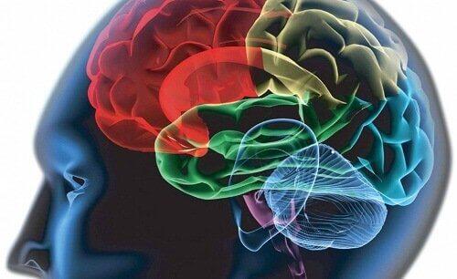 Cognitieve processen in de hersenen die stemmingswisselingen veroorzaken