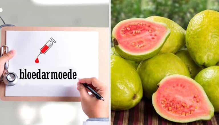 Ontdek de geweldige eigenschappen van guave
