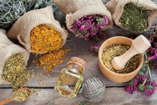 Hyaluronzuur: aromatische kruiden