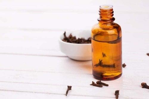 Kruidnagel als remedie tegen spijsverteringsproblemen
