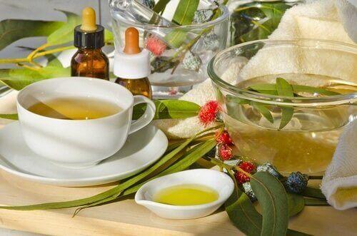 Eucalyptusthee is een van de middelen om je longen te reinigen
