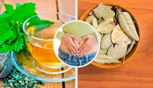 Problemen van de spijsvertering verbeteren met vijf kruiden