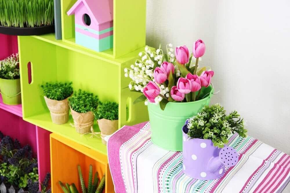 Kamerplanten en kleurrijke bloemen